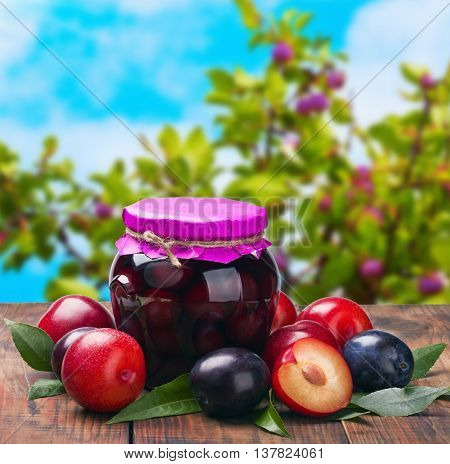 ripe plum and fresh canned plum tree in the background