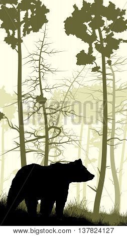 Vertical illustration of grassy hillside and coniferous wood with bear.