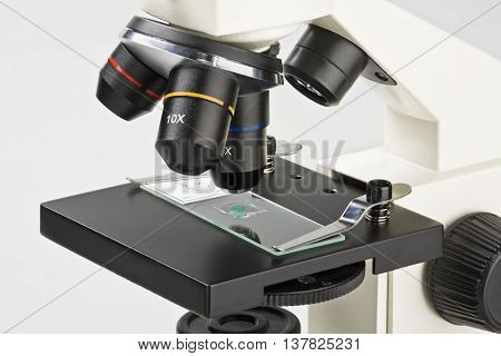 micropreparations study under the microscope laboratory medical