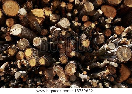 the chopped firewood stacked in a pile