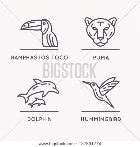 Brazilian culture linear icons set. Animals Of South America. Vector illustration of Toucan Puma Hummingbird and Dolphin.