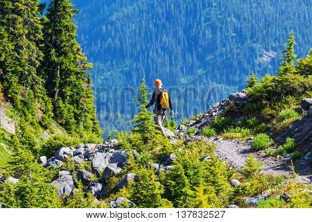 Backpacker in the summer mountains