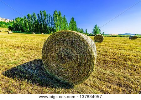 Landscape with hay rolls in Provence, France.
