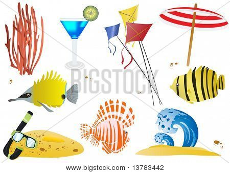 Set of summer objects and sea wildlife, vector illustration