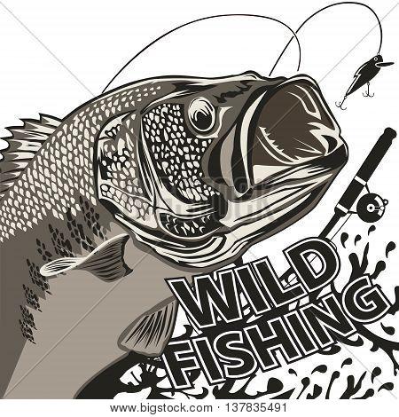 Bass Wild Fishing