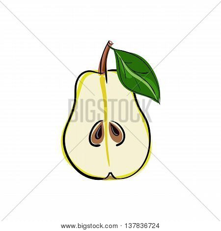 Pear fruit stock vector illustration. Green pear - cut half with seeds. Vector illustration