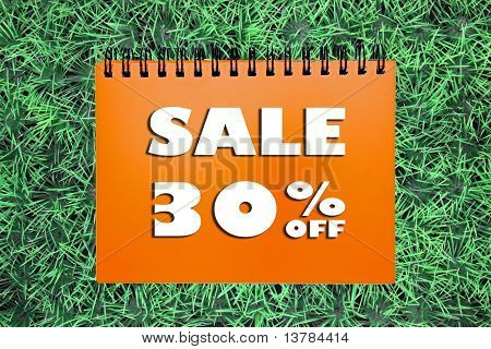 30% Sale Sign On Grass Background
