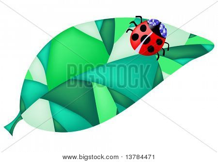 Vector illustration of ladybug on the leaf over white background