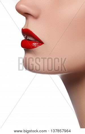 Professional Lips Make-up. Lipgloss And Brush. Lipstick. Beauty