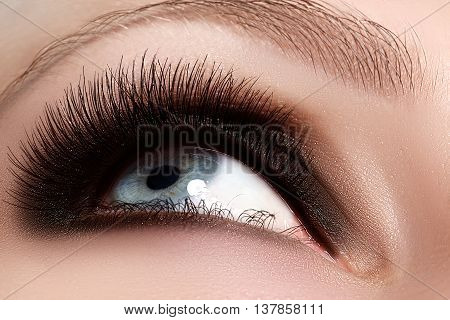 Macro Shot Of Woman Beautiful Eye With Extremely Long Eyelashes