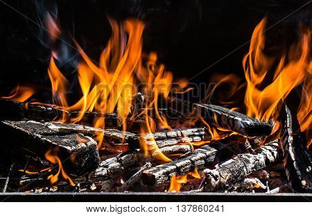 Burning firewood in the fireplace. Close up