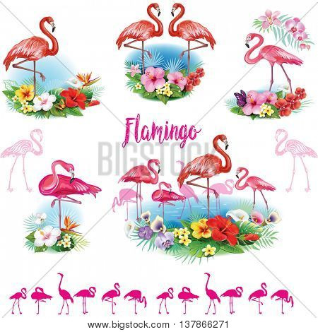 Set of Flamingoes and Arrangement from tropical flowers