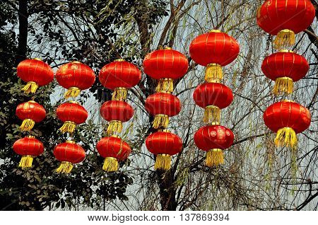 Jun Le China - January 25 2014 : A row of bright red Chinese Lunar New Year lanterns with golden tassles hang from trees at the entry to the town