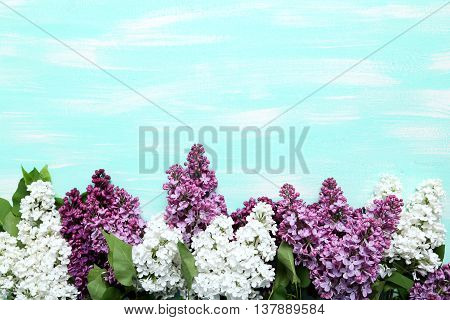 Blooming Lilac Flowers On A Blue Wooden Table