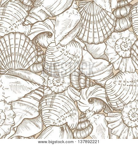 sea shells beige and white seamless vector background