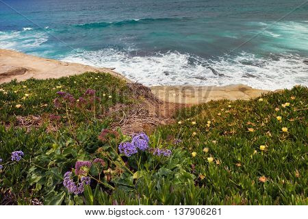 La Jolla Cove at spring time, San Diego, California