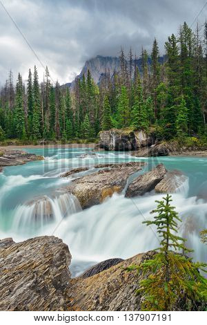 Creek in Yoho National Park in Canada