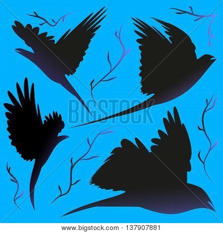Birds. Four poses flying birds through the branches.