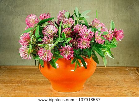 Alfalfa. Still life. Bouquet of meadow flowers in orange pots standing on a wooden table. Rustic style.