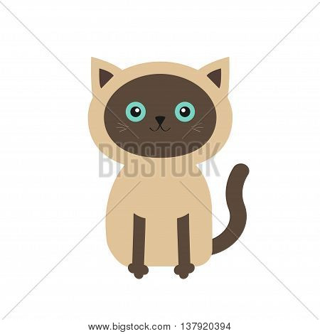 Siamese cat in flat design style. Cute cartoon character. Happy cat with blue eyes. White background. Isolated. Vector illustration