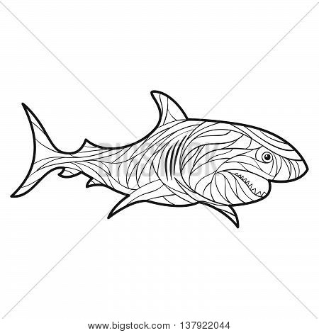 Vector monochrome hand drawn illustration of shark. Coloring page with high details isolated on white background. Boho style. Design for T-shirt greeting card or poster.