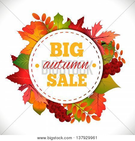Big autumn sale. Autumn typographical background with autumn leaves. Fall leaf. Vector illustration EPS 10.