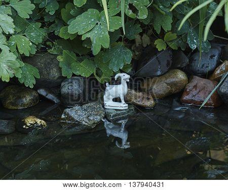white porcelian goat on stone near water