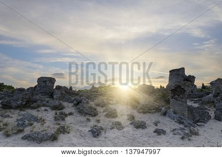 Field of with large stones against the sky. Sunset.