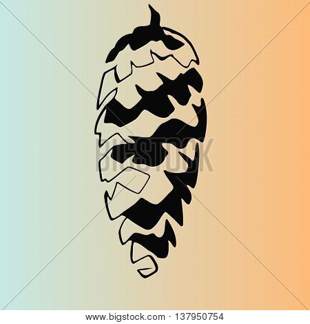 sketch stencil fir-cone on a light background. vector illustration
