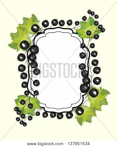 Vector hand drawn label currants. Black currant berries menu circle design recipe place text inscription frame.
