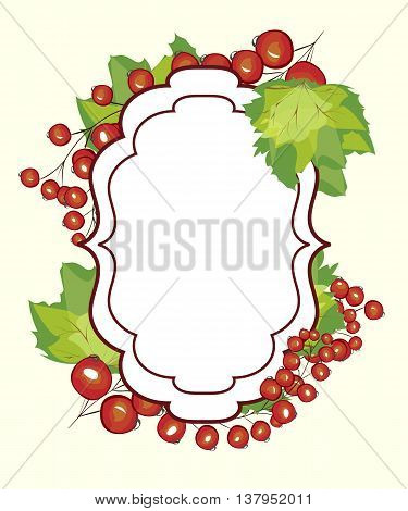 Vector hand drawn label berry currants. Red currant berries menu circle design recipe place text inscription frame.