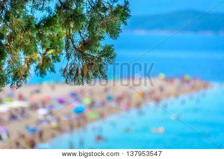 Golden Cape is famous european beach in Bol, Island of Brac, Croatia summertime.