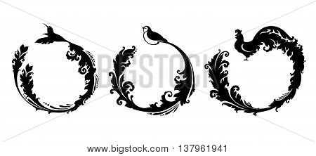 Decorative bird with long decorative tail. Vector illustration set. Hummingbird, bird, cock