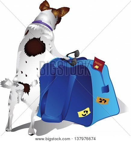 Vector drawing of a dog with Travel Bags