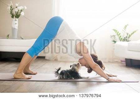 Pregnant Woman And Puppy Practicing Dog Yoga Pose At Home