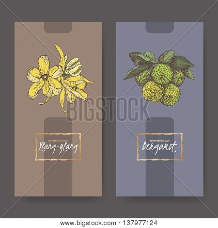 Set of two elegant labels with ylang-ylang and bergamot orange bouquet color sketch. Aromatherapy series. Great for traditional medicine, perfume design, cooking or gardening labels.