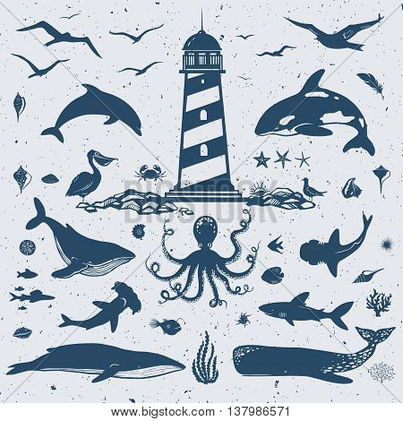 big set of marine creatures, nautical collection, vector sea animals and birds