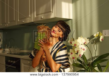 Girl holds on hands and hugging Yorkshire Terrier. Pedigree dog. Funny animals. Girl and pet in kitchen