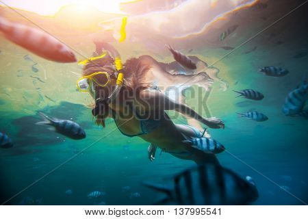 Young lady diving by the school of fish on the single breath