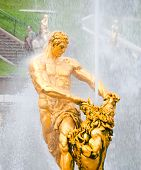 image of samson  - golden statue of Samson in lower park of Peterhof - JPG