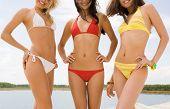 Постер, плакат: Портрет три грациозные девушки в бикини улыбаясь в камеру на пляже