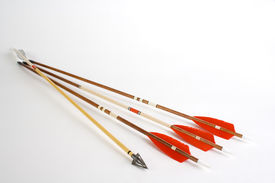 picture of fletching  - Photo from wooden fletched bow arrows and hunting point in one arrow - JPG
