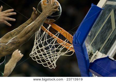 Pamesa Valencia - Spainish ACB League Team - Europe - Season 2007-2008