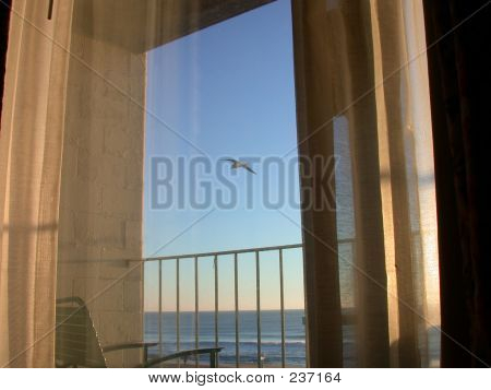 Window At The Beach