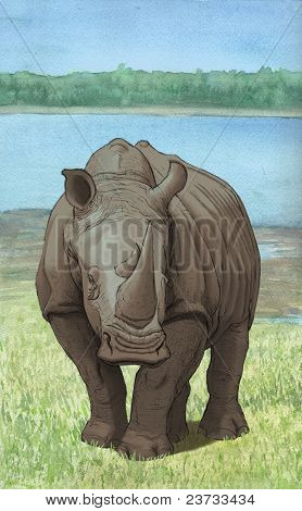 Lakeside Rhino