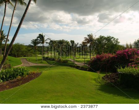 Golf Course After Rainstorm
