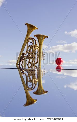 Two Brass Instruments On Mirror