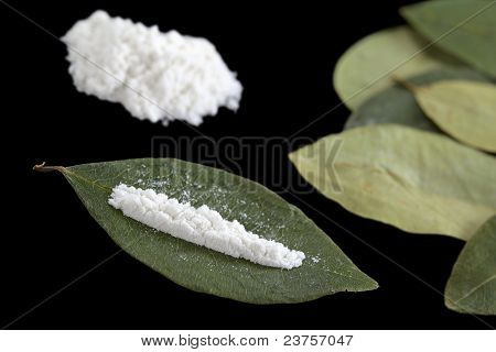Cocaine  on Coca Leaf