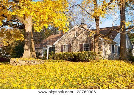 Philadelphia casa árbol las hojas de otoño otoño amarillo