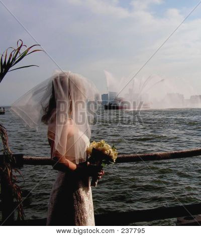 Bride On The Hudson River